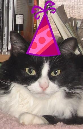 oreos_birthday